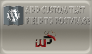 How to Add Custom Text Field in WordPress Without Plugin