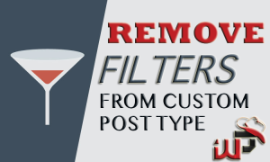 Remove Filters or hooks from Custom Post Type